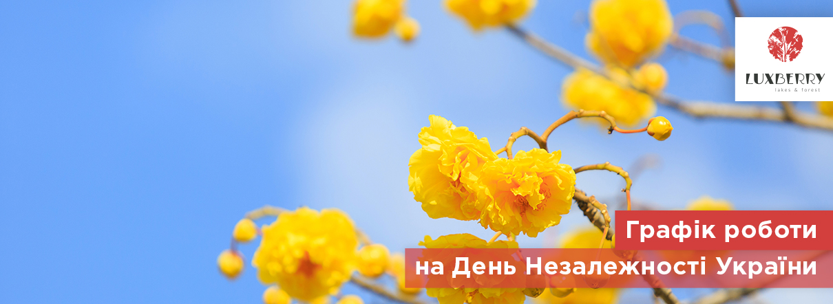 График работы отдела продаж ЖК Luxberry lakes & forest на День Независимости Украины