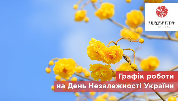Графік роботи відділу продажів ЖК Luxberry lakes & forest на День Незалежності України
